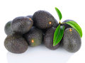 Pile of Hass Avocados Stock Image