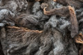 Pile of high quality gray merino wool Royalty Free Stock Photo