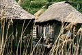 Pile-houses of Benin Royalty Free Stock Photography