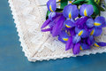 Pile of iris flowers Royalty Free Stock Images