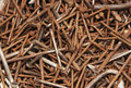 Pile of iron nails rust Stock Photo