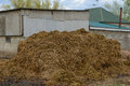 Pile of manure Royalty Free Stock Photo