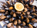 Pile of mussels with lemons, mediterenean food Royalty Free Stock Photo