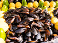 Pile of mussels with many lemons Royalty Free Stock Photo