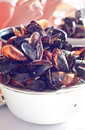 Pile of mussels shells Royalty Free Stock Photo