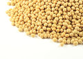 Pile natural organic soybean Stock Photography