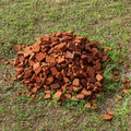 Pile of old red bricks on grass Royalty Free Stock Photo