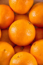 Pile of oranges Royalty Free Stock Photo
