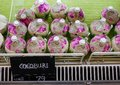 stock image of  Pile of peeled cocos on a supermarket stall