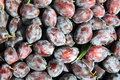Pile of plums at farmer s market Royalty Free Stock Images