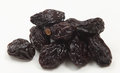 Pile of prunes closeup a close up view a on a white background Royalty Free Stock Photography