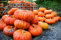 Pile of pumpkins for sale. Shallow DOF Stock Photos