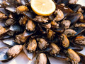 Pile of rice stuffed mussels with many lemons Royalty Free Stock Photo