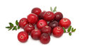 Pile of ripe cranberries (isolated) Royalty Free Stock Photo