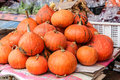 Pile of small pumpkins background Stock Photography