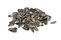 Pile of Sunflower Seeds Royalty Free Stock Photo