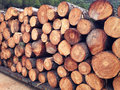 Pile of timber ready for shipment industrial background Royalty Free Stock Photography