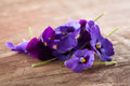 Pile of violet eatable flowers with yellow details on a wooden table close up Stock Image