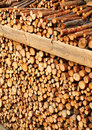 Pile of wood Stock Photos