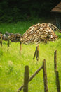 Pile of wood behind wooden fence on a green grass Royalty Free Stock Photo