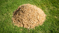Pile Of Wood Chips Royalty Free Stock Photo