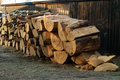 Pile of wood freshly cut tree logs piled up Royalty Free Stock Images