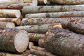 Pile of wood logs for heating purpose Royalty Free Stock Photo