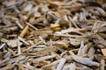 Pile of wooden brown shavings Stock Photography