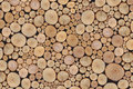Pile of wooden logs Royalty Free Stock Images
