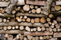 Piled up logs Stock Photography