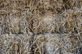 Piles of dry rice straw Royalty Free Stock Photo