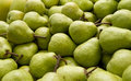 Piles of pears Royalty Free Stock Photography
