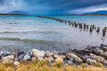 Piles of ruined pier protruding from the water Royalty Free Stock Photo