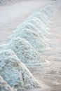 Piles of salt on the surface of the salt lake thailand Royalty Free Stock Images