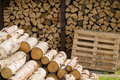 Piles of wooden logs pile natural fresh cutted Royalty Free Stock Photography