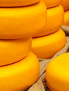 Piles of yellow dutch cheese on a market large round Royalty Free Stock Image