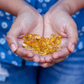 Pills of fish oil
