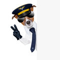 Pilot dog captain behind a banner with peace fingers Royalty Free Stock Images