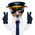 Pilot dog captain with peace fingers and a blue tie Royalty Free Stock Image