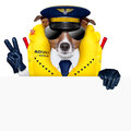 Pilot dog captain wearing emergency life vest behind a placard with peace fingers Stock Images