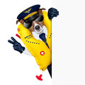 Pilot dog captain wearing emergency life vest behind a placard with peace fingers Stock Photo