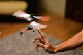 Piloting remote control helicopter flying hovered in the air Royalty Free Stock Photography