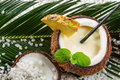 Pinacolada in a coconut Royalty Free Stock Photo