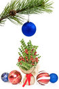 Pine branch and christmas decorations Stock Photos
