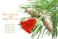 Pine branch with cones and red Christmas bell Royalty Free Stock Photo