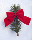 Pine Branch with a Red Bow Royalty Free Stock Photography