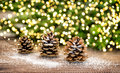 Pine cone and christmas tree branches with lights decoration festive garland Royalty Free Stock Photos