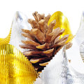 Pine cone and golden and silver garland Stock Image
