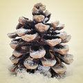 Pine cone picture of a with snow on a beige background with a retro effect Royalty Free Stock Images