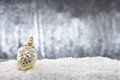 Pine cone a single christmas on snow with silver glittering background Stock Photo